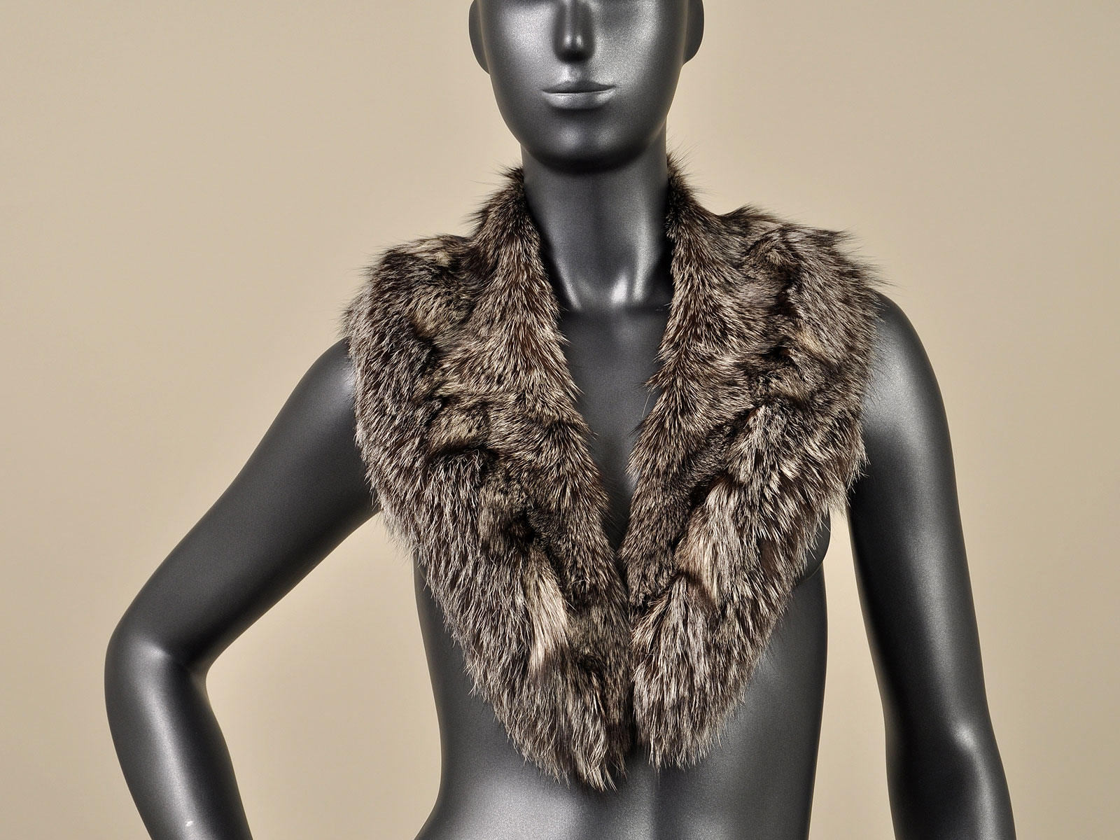 blue silver fox legs paw fur collar
