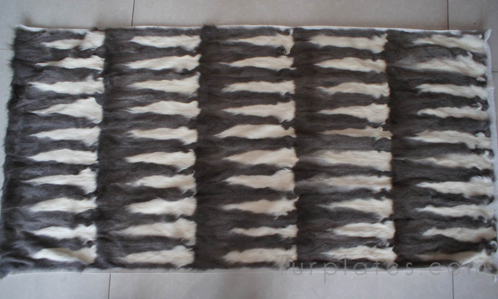 grey squirrel belly fur plate